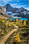 Hiking Trail at McArthur Lake in Autumn, Yoho National Park, British Columbia, Canada Stock Photo - Premium Rights-Managed, Artist: R. Ian Lloyd, Code: 700-06465538