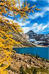 Autumn Larch at McArthur Lake, Yoho National Park, British Columbia, Canada Stock Photo - Premium Rights-Managed, Artist: R. Ian Lloyd, Code: 700-06465549