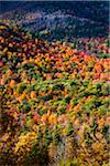 Aerial View of Mountainside Forest in Autumn, Whiteface Mountain, Wilmington, Essex County, New York State, USA Stock Photo - Premium Rights-Managed, Artist: R. Ian Lloyd, Code: 700-06465599