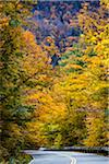 Winding Country Road, Smugglers Notch, Lamoille County, Vermont, USA Stock Photo - Premium Rights-Managed, Artist: R. Ian Lloyd, Code: 700-06465610