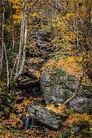 Boulder and Forest Stream in Autumn, Smugglers Notch, Lamoille County, Vermont, USA Stock Photo - Premium Rights-Managednull, Code: 700-06465620