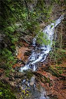 Waterfall and Evergreen Trees, Moss Glen Falls Natural Area, C.C. Putnam State Forest, Lamoille County, Vermont, USA Stock Photo - Premium Rights-Managednull, Code: 700-06465639