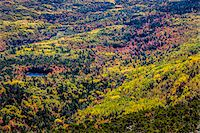 fall trees lake - View of Valley with Fall Colours as seen from Cadillac Mountain, Acadia National Park, Mount Desert Island, Hancock County, Maine, USA Stock Photo - Premium Rights-Managednull, Code: 700-06465704