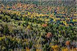 Overview of Trees in Autumn, Acadia National Park, Mount Desert Island, Hancock County, Maine, USA Stock Photo - Premium Rights-Managed, Artist: R. Ian Lloyd, Code: 700-06465716
