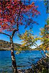 Jordan Pond in Acadia National Park, Maine, USA Stock Photo - Premium Rights-Managed, Artist: R. Ian Lloyd, Code: 700-06465721