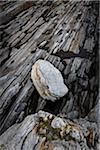 Light-Colored Rocks on Dark Striated Rocky Terrain Stock Photo - Premium Rights-Managed, Artist: R. Ian Lloyd, Code: 700-06465734