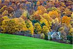 Country House in Forest by Green Field, Lenox, Berkshire County, Massachusetts, USA Stock Photo - Premium Rights-Managed, Artist: R. Ian Lloyd, Code: 700-06465825