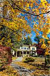 Yellow House in Autumn, Stockbridge, Berkshire County, Massachusetts, USA Stock Photo - Premium Rights-Managed, Artist: R. Ian Lloyd, Code: 700-06465829
