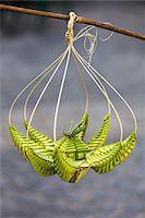 fragile - Close-Up of Palm Leaf Weaving Craft, Plaza de la Catedral, Havana, Cuba Stock Photo - Premium Rights-Managednull, Code: 700-06465923