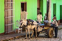 Man with Horse Drawn Cart in front of Green Building, Trinidad, Cuba Stock Photo - Premium Rights-Managednull, Code: 700-06465972