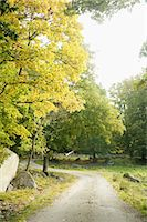 forward - Path in park Stock Photo - Premium Royalty-Freenull, Code: 6102-06470992
