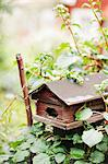 View of wooden nesting box Stock Photo - Premium Royalty-Free, Artist: Robert Harding Images, Code: 6102-06471016