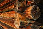Close-up of Corner of Old Wooden Log House, near Garmisch-Partenkirchen, Upper Bavaria, Bavaria, Germany Stock Photo - Premium Royalty-Free, Artist: Michael Breuer, Code: 600-06471323