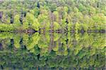 Soft Green Spring Foliage Reflecting in Lake, Lac du Val, Jura, Franche-Comte, France Stock Photo - Premium Royalty-Free, Artist: F. Lukasseck, Code: 600-06486181