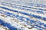 Field covered with snow in Nantan, Kyoto Prefecture Stock Photo - Premium Royalty-Free, Artist: Robert Harding Images, Code: 622-06486897