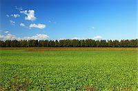 earth no people - Countryside in Hokkaido Stock Photo - Premium Royalty-Freenull, Code: 622-06486942
