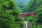 Bridge and waterfall in Otari, Nagano Prefecture Stock Photo - Premium Royalty-Free, Artist: Aflo Relax, Code: 622-06487173