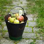 Pail of apples on cobblestone walk Stock Photo - Premium Royalty-Free, Artist: Ikon Images, Code: 649-06489352
