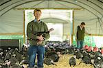 Farmer holding turkey in barn Stock Photo - Premium Royalty-Free, Artist: Christina Handley, Code: 649-06489525
