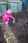 Little girl watering garlic shoot on an allotment Variety: Solent Wight, British grown Stock Photo - Premium Rights-Managed, Artist: foodanddrinkphotos, Code: 824-06490544