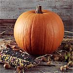 Pumpkin harvest Stock Photo - Premium Rights-Managed, Artist: foodanddrinkphotos, Code: 824-06491240