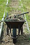 A Wheelbarrow on an Allotment Stock Photo - Premium Rights-Managed, Artist: foodanddrinkphotos, Code: 824-06492977