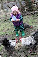 Baby girl helping feed chickens in the garden Stock Photo - Premium Rights-Managednull, Code: 824-06493345
