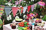 A table laid in a garden with biscuits, fresh vegetables, jam and cake Stock Photo - Premium Royalty-Freenull, Code: 659-06493671