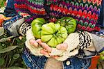 Hands holding three green tomatoes (type: costoluto florentino) Stock Photo - Premium Royalty-Free, Artist: Beanstock Images, Code: 659-06493672