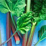 Several sticks of rhubarb Stock Photo - Premium Royalty-Free, Artist: Photocuisine, Code: 659-06494155