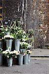 A flower stall with zinc vases in front of an old brick wall Stock Photo - Premium Royalty-Freenull, Code: 659-06494325