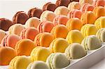 Rows of Assorted Macaroons Stock Photo - Premium Royalty-Freenull, Code: 659-06494349