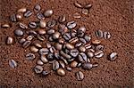 Coffee beans in coffee powder Stock Photo - Premium Royalty-Free, Artist: Jean-Christophe Riou, Code: 659-06494487