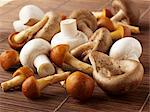 Button mushrooms and oriental mushrooms Stock Photo - Premium Royalty-Freenull, Code: 659-06494778