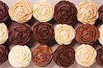 Rose cupcakes with brown frosting Stock Photo - Premium Royalty-Freenull, Code: 659-06495704