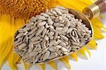 Sunflower seed on a brass scoop Stock Photo - Premium Royalty-Freenull, Code: 659-06495749
