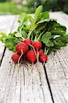 A bunch of radishes Stock Photo - Premium Royalty-Free, Artist: CulturaRM, Code: 659-06495761