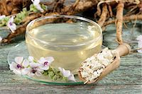pharmaceutical plant - Marsh mallow root tea, roots and flowers Stock Photo - Premium Royalty-Freenull, Code: 659-06495782