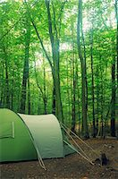 Woodland camping Stock Photo - Premium Royalty-Freenull, Code: 6106-06496208