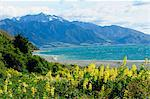 Lake Te Anau, Southland, South Island, New Zealand, Pacific Stock Photo - Premium Rights-Managed, Artist: Robert Harding Images, Code: 841-06499721