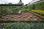 Vegetable garden, Chateau de Villandry, UNESCO World Heritage Site, Indre-et-Loire, Touraine, Loire Valley, France, Europe Stock Photo - Premium Rights-Managed, Artist: Robert Harding Images, Code: 841-06499937