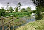 The River Windrush meandering through countryside near Burford in the Cotswolds, Oxfordshire, England, United Kingdom, Europe Stock Photo - Premium Rights-Managed, Artist: Robert Harding Images, Code: 841-06501307