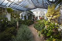 People inside orchid house at Botanical Gardens (Jardim Botanico), Rio de Janeiro, Brazil, South America Stock Photo - Premium Rights-Managednull, Code: 841-06501509