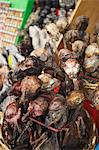 Dried llama foetuses in Witches' Market, La Paz, Bolivia, South America Stock Photo - Premium Rights-Managed, Artist: Robert Harding Images, Code: 841-06501821