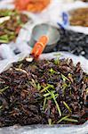 Deep fried insects at market, Phnom Penh, Cambodia, Indochina, Southeast Asia, Asia Stock Photo - Premium Rights-Managed, Artist: Robert Harding Images, Code: 841-06501907
