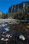 River flowing through the Carnarvon Gorge, Queensland, Australia, Pacific Stock Photo - Premium Rights-Managed, Artist: Robert Harding Images, Code: 841-06502270