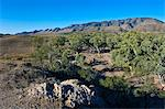 Flinders Ranges National Park, South Australia, Australia, Pacific Stock Photo - Premium Rights-Managed, Artist: Robert Harding Images, Code: 841-06502363