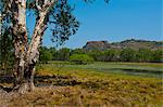 Kakadu National Park, UNESCO World Heritage Site, Northern Territory, Australia, Pacific Stock Photo - Premium Rights-Managed, Artist: Robert Harding Images, Code: 841-06502369