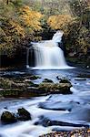 West Burton Waterfall in autumn, Wensleydale, North Yorkshire, England, United Kingdom, Europe Stock Photo - Premium Rights-Managed, Artist: Robert Harding Images, Code: 841-06503059