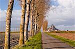 A tree lined avenue leads towards Mont Saint Michel, UNESCO World Heritage Site, Normandy, France, Europe Stock Photo - Premium Rights-Managed, Artist: Robert Harding Images, Code: 841-06503217